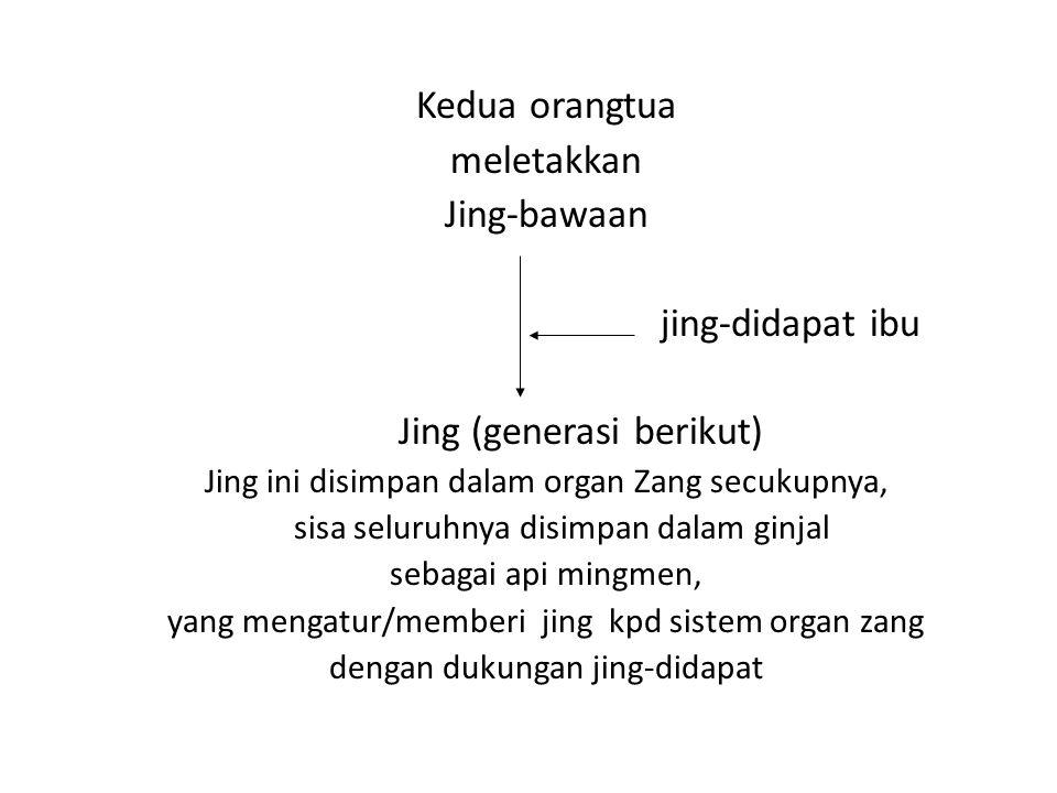 Kedua orangtua meletakkan Jing-bawaan jing-didapat ibu Jing (generasi berikut) Jing ini disimpan dalam organ Zang secukupnya, sisa seluruhnya disimpan