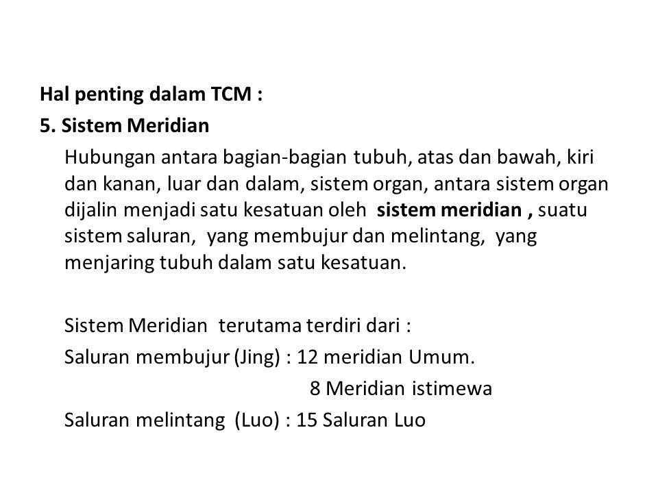 Hal penting dalam TCM : 5. Sistem Meridian Hubungan antara bagian-bagian tubuh, atas dan bawah, kiri dan kanan, luar dan dalam, sistem organ, antara s