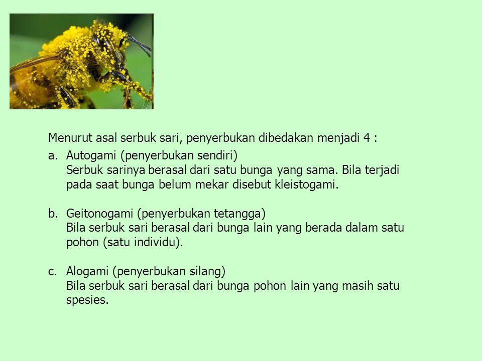 Menurut asal serbuk sari, penyerbukan dibedakan menjadi 4 : a.Autogami (penyerbukan sendiri) Serbuk sarinya berasal dari satu bunga yang sama. Bila te