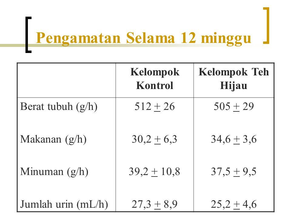 Pengamatan Selama 12 minggu Kelompok Kontrol Kelompok Teh Hijau Berat tubuh (g/h) Makanan (g/h) Minuman (g/h) Jumlah urin (mL/h) 512 + 26 30,2 + 6,3 3
