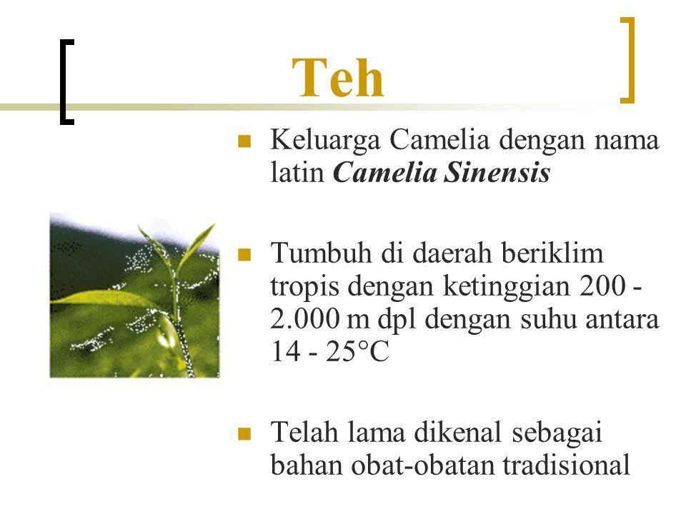 Jenis-Jenis Teh Berdasarkan proses fermentasinya, terdapat empat jenis teh, yaitu: Teh hijau (green tea) Teh hijau (green tea) Teh oolang (oolang tea) Teh oolang (oolang tea) Teh hitam (black tea) Teh hitam (black tea) Teh pu-erh (pu-erh tea) Teh pu-erh (pu-erh tea)