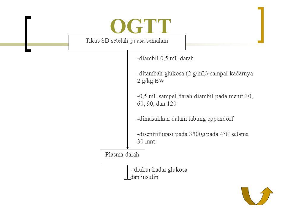 OGTT - diukur kadar glukosa dan insulin Plasma darah Tikus SD setelah puasa semalam -diambil 0,5 mL darah -ditambah glukosa (2 g/mL) sampai kadarnya 2