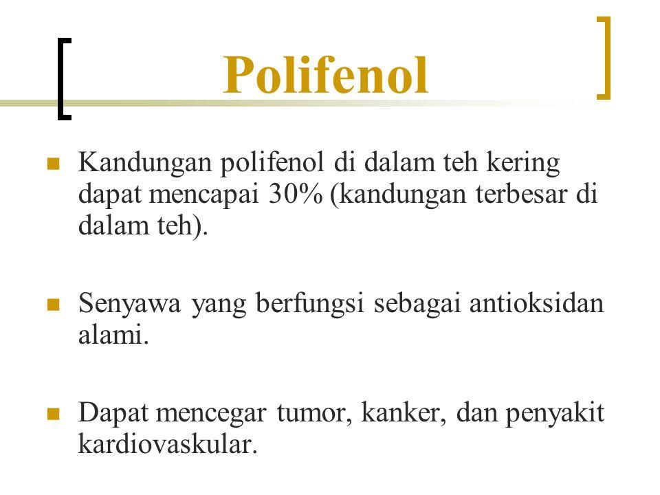 Polifenol Kandungan polifenol di dalam teh kering dapat mencapai 30% (kandungan terbesar di dalam teh). Senyawa yang berfungsi sebagai antioksidan ala