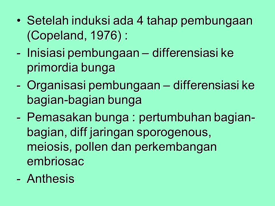 Setelah induksi ada 4 tahap pembungaan (Copeland, 1976) :Setelah induksi ada 4 tahap pembungaan (Copeland, 1976) : -Inisiasi pembungaan – differensias
