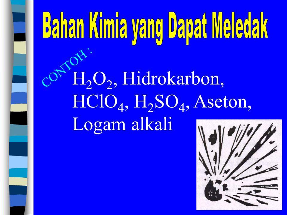 H 2 O 2, Hidrokarbon, HClO 4, H 2 SO 4, Aseton, Logam alkali CONTOH :