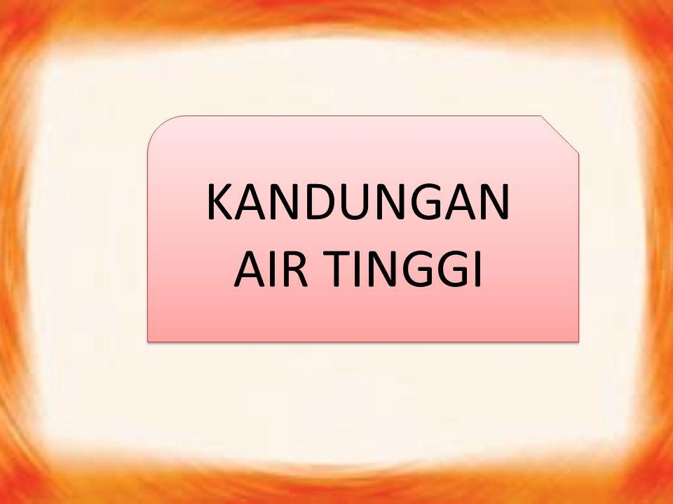 KANDUNGAN AIR TINGGI