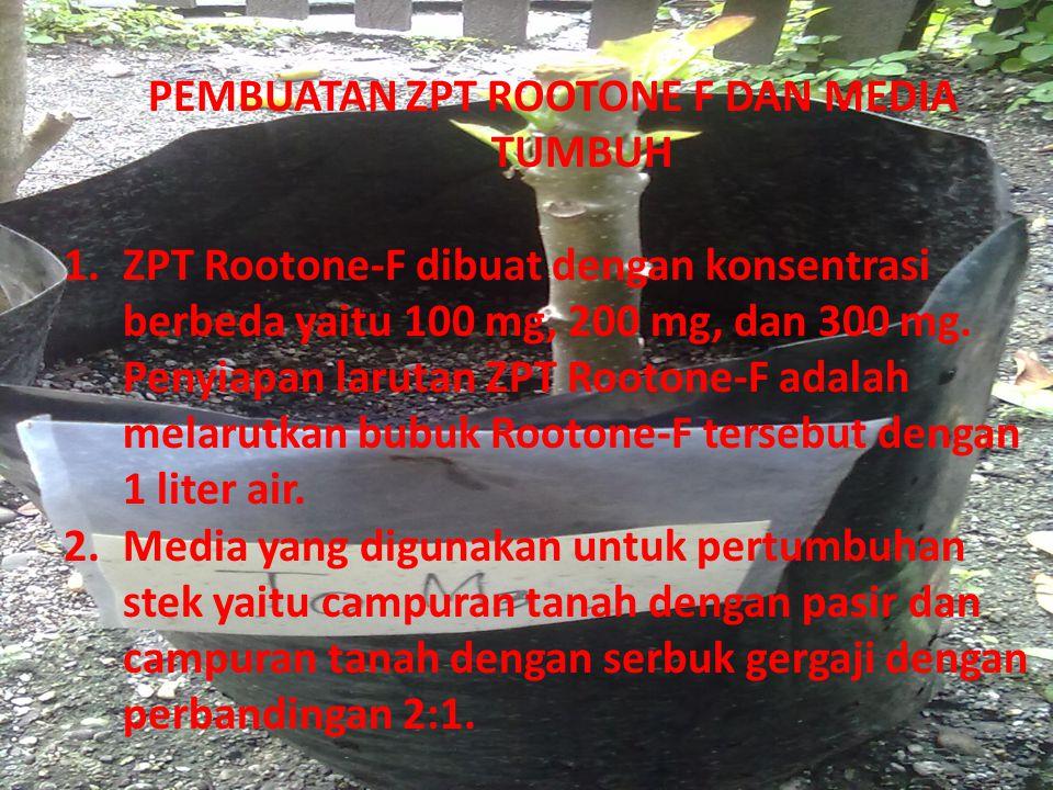 PEMBUATAN ZPT ROOTONE F DAN MEDIA TUMBUH 1.ZPT Rootone-F dibuat dengan konsentrasi berbeda yaitu 100 mg, 200 mg, dan 300 mg. Penyiapan larutan ZPT Roo