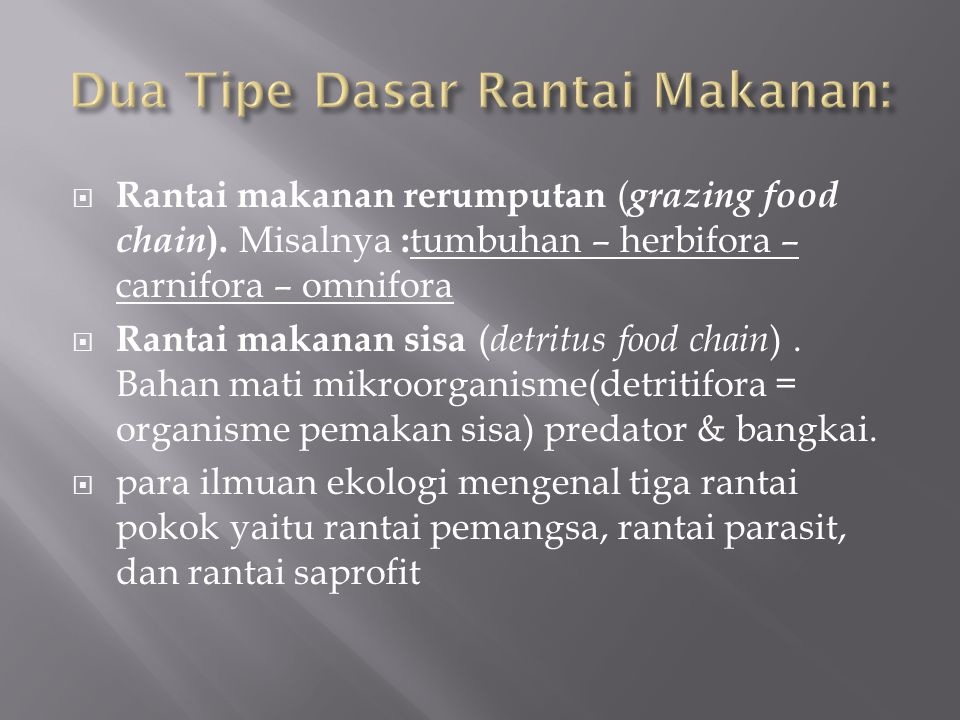  Rantai makanan rerumputan ( grazing food chain ). Misalnya : tumbuhan – herbifora – carnifora – omnifora  Rantai makanan sisa ( detritus food chain