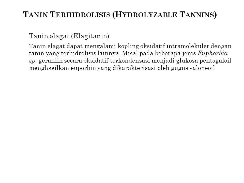 T ANIN T ERHIDROLISIS (H YDROLYZABLE T ANNINS ) Tanin elagat (Elagitanin) Tanin elagat dapat mengalami kopling oksidatif intramolekuler dengan tanin y
