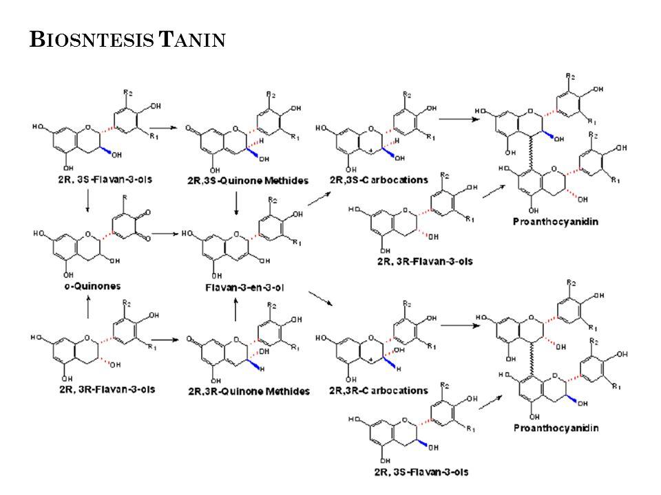 Regulasi Biosintesis He et al. 2008