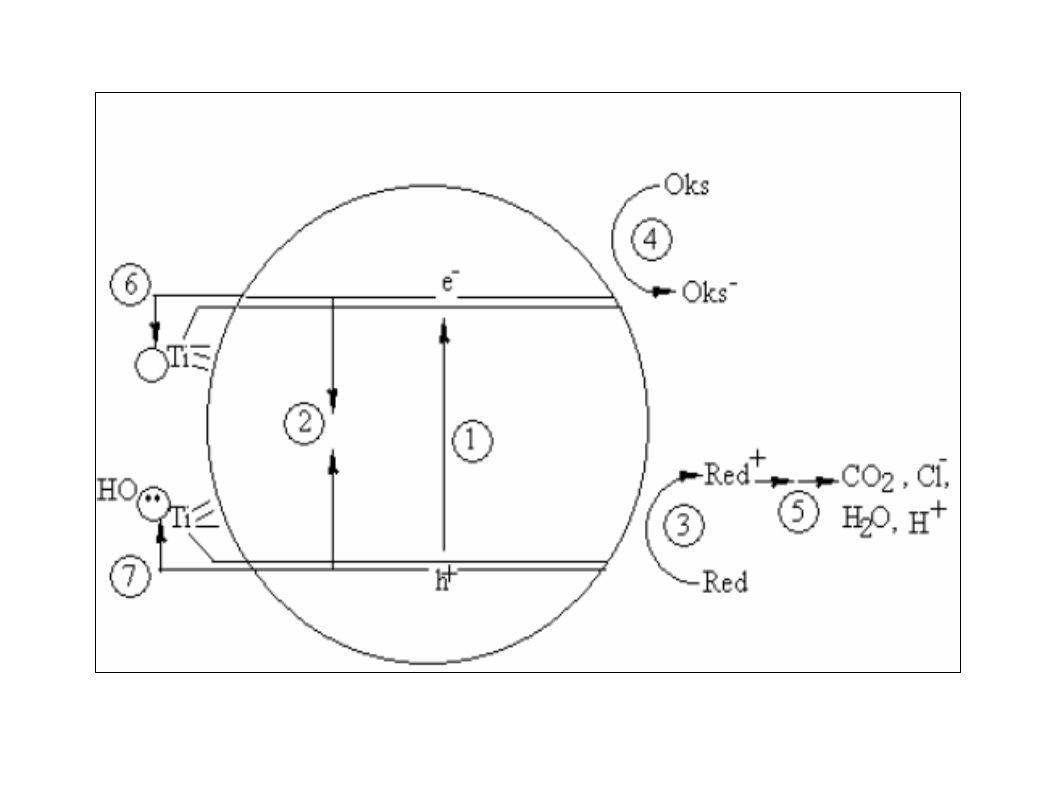 1.Pembentukan pembawa muatan (e - CB, h + VB ) 2.