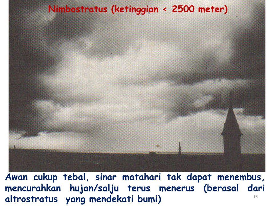 16 Awan cukup tebal, sinar matahari tak dapat menembus, mencurahkan hujan/salju terus menerus (berasal dari altrostratus yang mendekati bumi) Nimbostratus (ketinggian ‹ 2500 meter)
