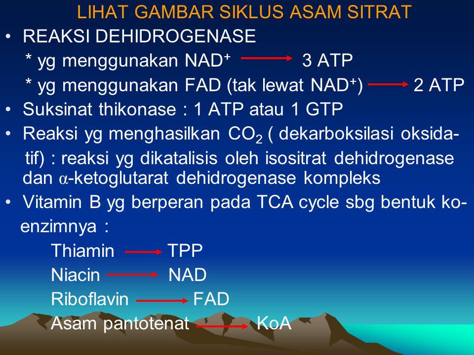 LIHAT GAMBAR SIKLUS ASAM SITRAT REAKSI DEHIDROGENASE * yg menggunakan NAD + 3 ATP * yg menggunakan FAD (tak lewat NAD + ) 2 ATP Suksinat thikonase : 1