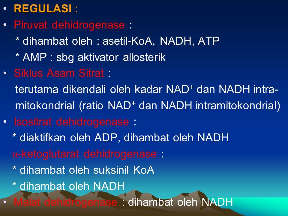 REGULASI : Piruvat dehidrogenase : * dihambat oleh : asetil-KoA, NADH, ATP * AMP : sbg aktivator allosterik Siklus Asam Sitrat : terutama dikendali ol