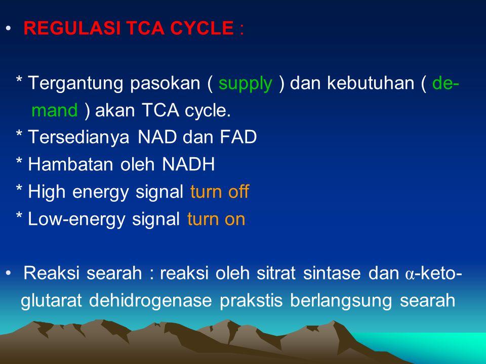 REGULASI TCA CYCLE : * Tergantung pasokan ( supply ) dan kebutuhan ( de- mand ) akan TCA cycle. * Tersedianya NAD dan FAD * Hambatan oleh NADH * High