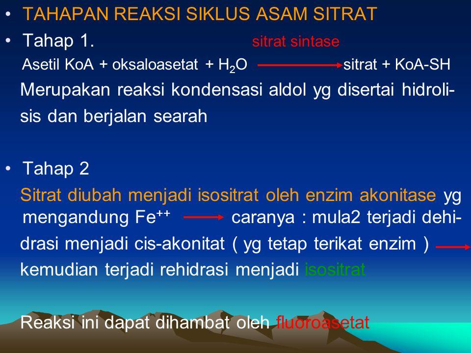TAHAPAN REAKSI SIKLUS ASAM SITRAT Tahap 1. sitrat sintase Asetil KoA + oksaloasetat + H 2 O sitrat + KoA-SH Merupakan reaksi kondensasi aldol yg diser