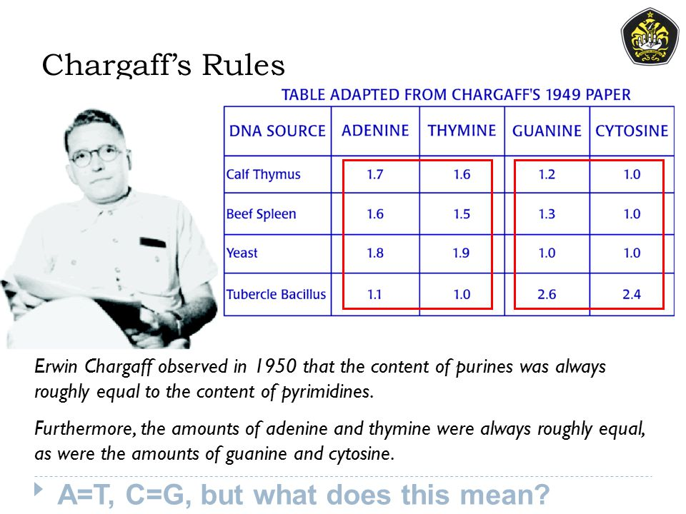 Chargaff's Rules Erwin Chargaff observed in 1950 that the content of purines was always roughly equal to the content of pyrimidines. Furthermore, the
