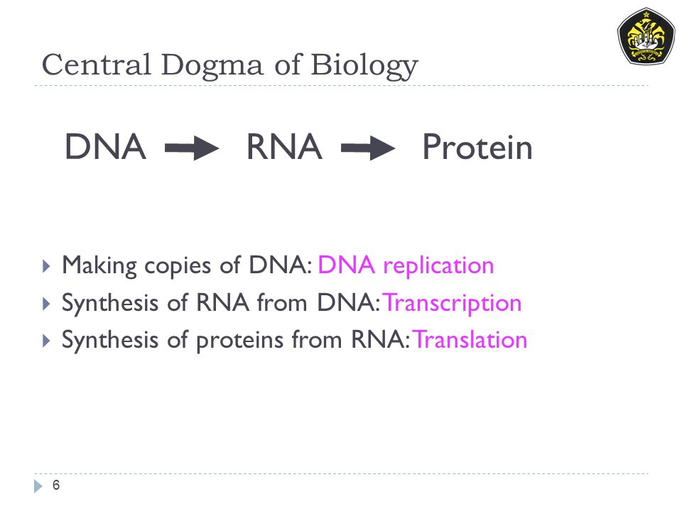 Struktur Organisme 7 Berdasarkan struktur sel dan sistem genetikanya maka organisme dibagi dalam 3 kelompok:  1.
