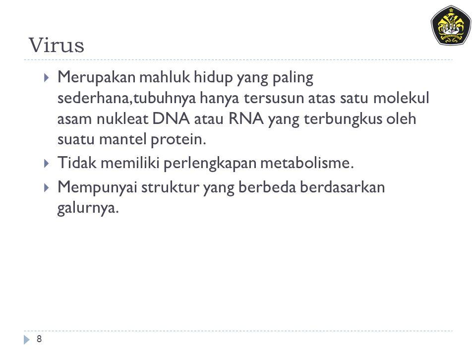 Virus 8  Merupakan mahluk hidup yang paling sederhana,tubuhnya hanya tersusun atas satu molekul asam nukleat DNA atau RNA yang terbungkus oleh suatu mantel protein.