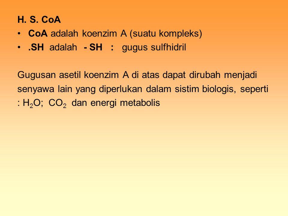 H. S. CoA CoA adalah koenzim A (suatu kompleks).SH adalah - SH : gugus sulfhidril Gugusan asetil koenzim A di atas dapat dirubah menjadi senyawa lain