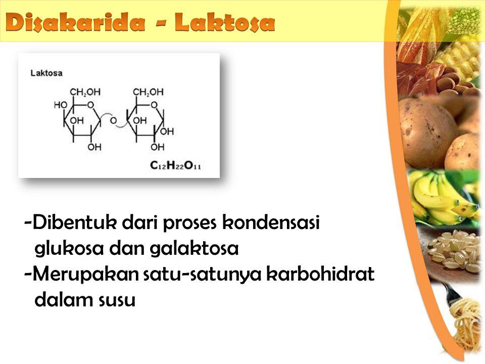 -Dibentuk dari proses kondensasi glukosa dan galaktosa -Merupakan satu-satunya karbohidrat dalam susu