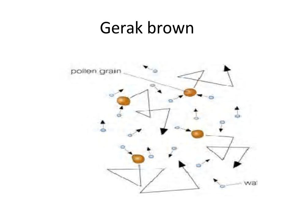 Gerak brown