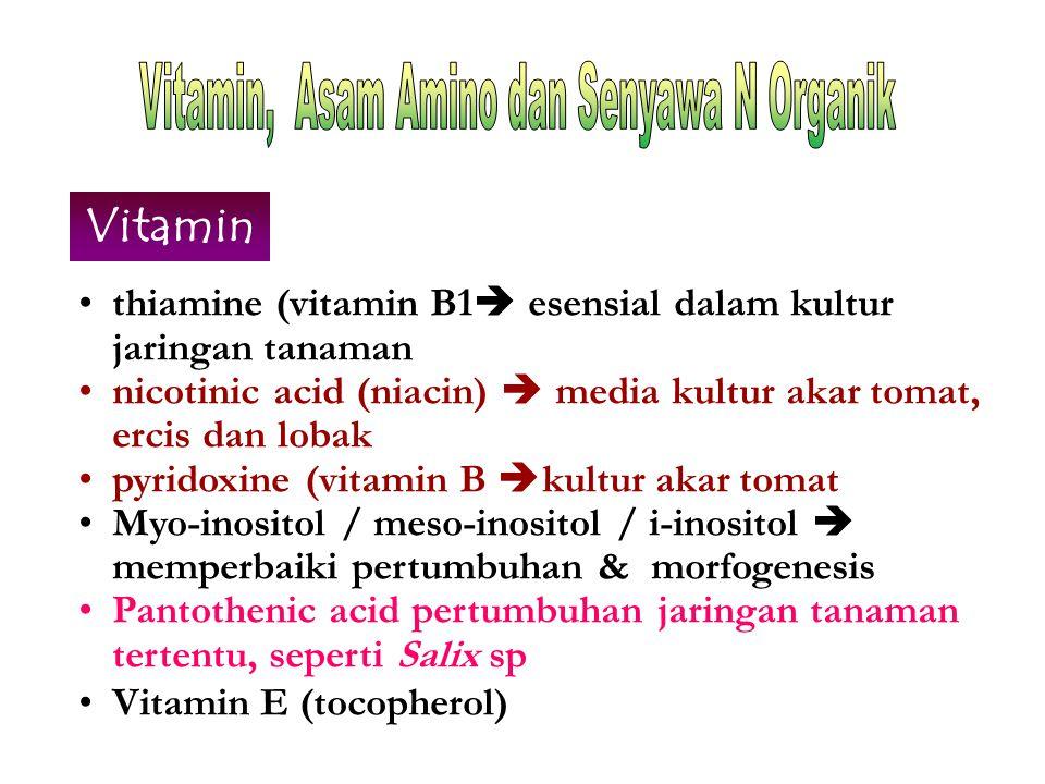 Vitamin thiamine (vitamin B1  esensial dalam kultur jaringan tanaman nicotinic acid (niacin)  media kultur akar tomat, ercis dan lobak pyridoxine (v