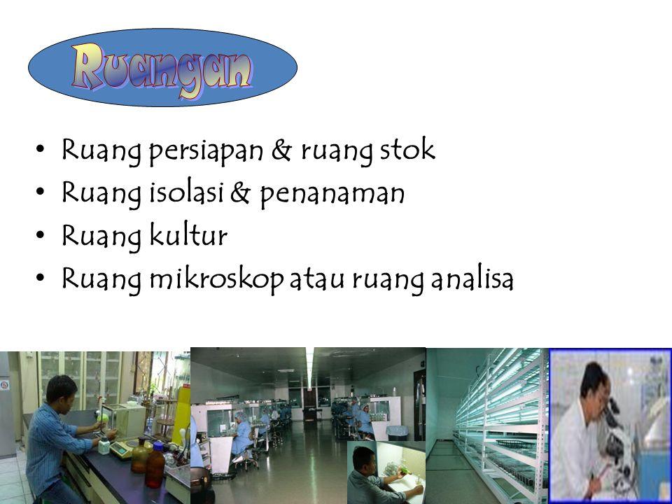 Ruang persiapan & ruang stok Ruang isolasi & penanaman Ruang kultur Ruang mikroskop atau ruang analisa