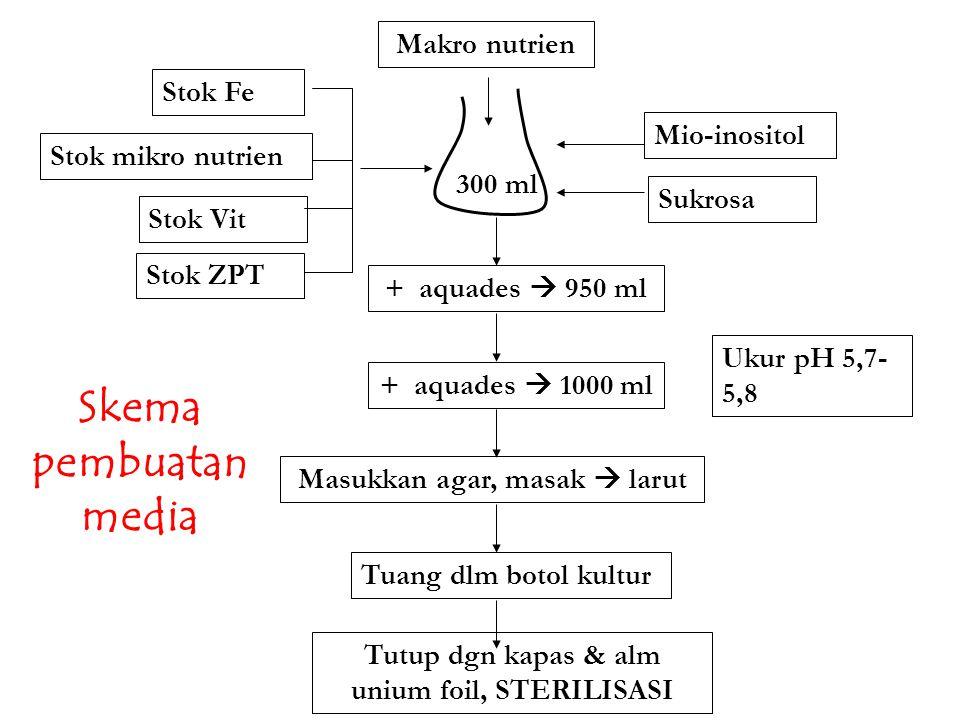 Makro nutrien Stok Fe Stok mikro nutrien Stok ZPT Stok Vit Mio-inositol Sukrosa + aquades  950 ml Ukur pH 5,7- 5,8 + aquades  1000 ml Masukkan agar,