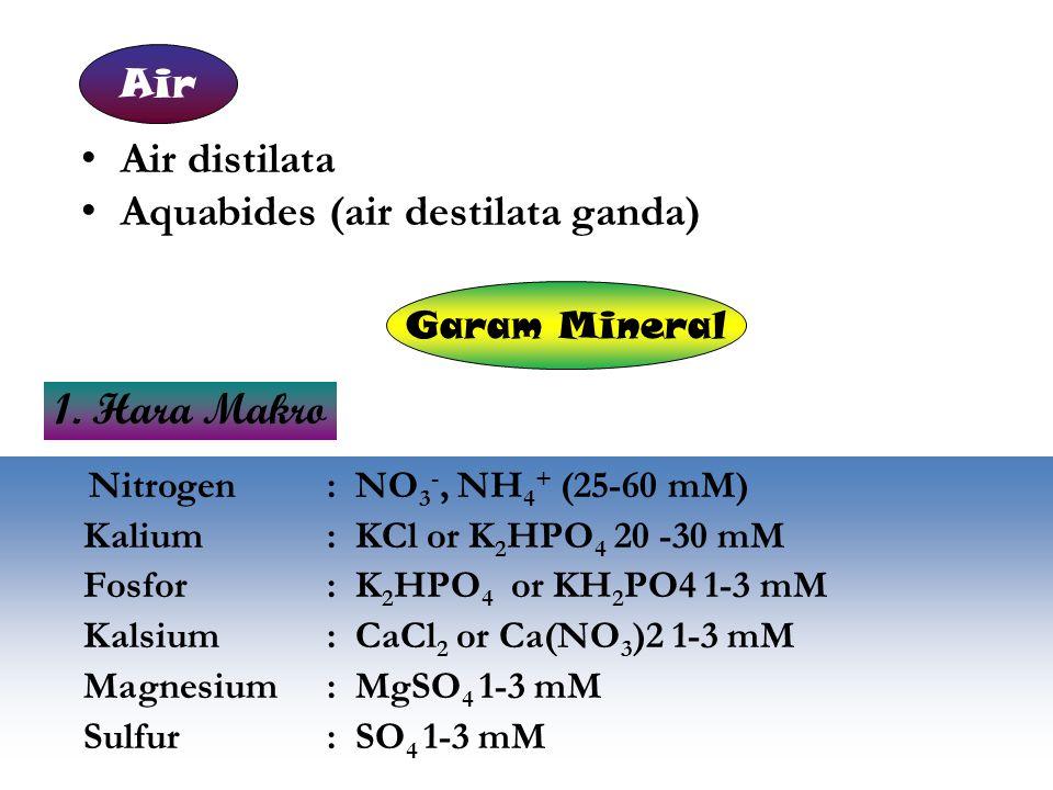 Air distilata Aquabides (air destilata ganda) Nitrogen : NO 3 -, NH 4 + (25-60 mM) Kalium : KCl or K 2 HPO 4 20 -30 mM Fosfor : K 2 HPO 4 or KH 2 PO4
