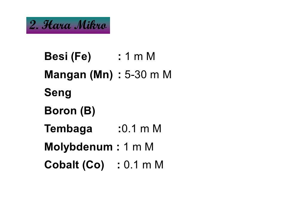 Besi (Fe): 1 m M Mangan (Mn): 5-30 m M Seng Boron (B) Tembaga :0.1 m M Molybdenum : 1 m M Cobalt (Co) : 0.1 m M 2. Hara Mikro