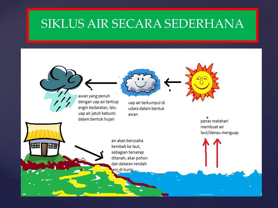 Siklus hidrologi berawal dari pemanasan air, baik yang berada di darat maupun yang berada di laut, dan yang berada pada tumbuh- tumbuhan oleh sinar matahari.