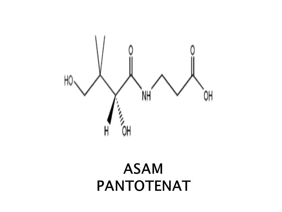 ASAM PANTOTENAT