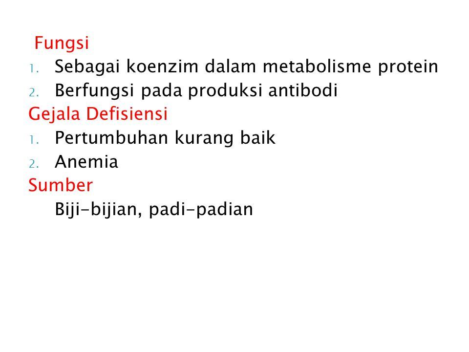 Fungsi 1.Sebagai koenzim dalam metabolisme protein 2.