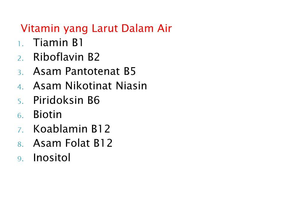 Vitamin yang Larut Dalam Air 1.Tiamin B1 2. Riboflavin B2 3.