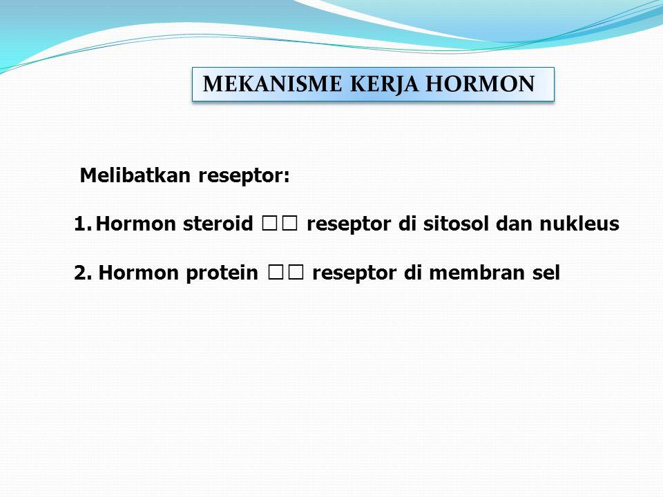 Melibatkan reseptor: 1.Hormon steroid reseptor di sitosol dan nukleus 2. Hormon protein reseptor di membran sel MEKANISME KERJA HORMON