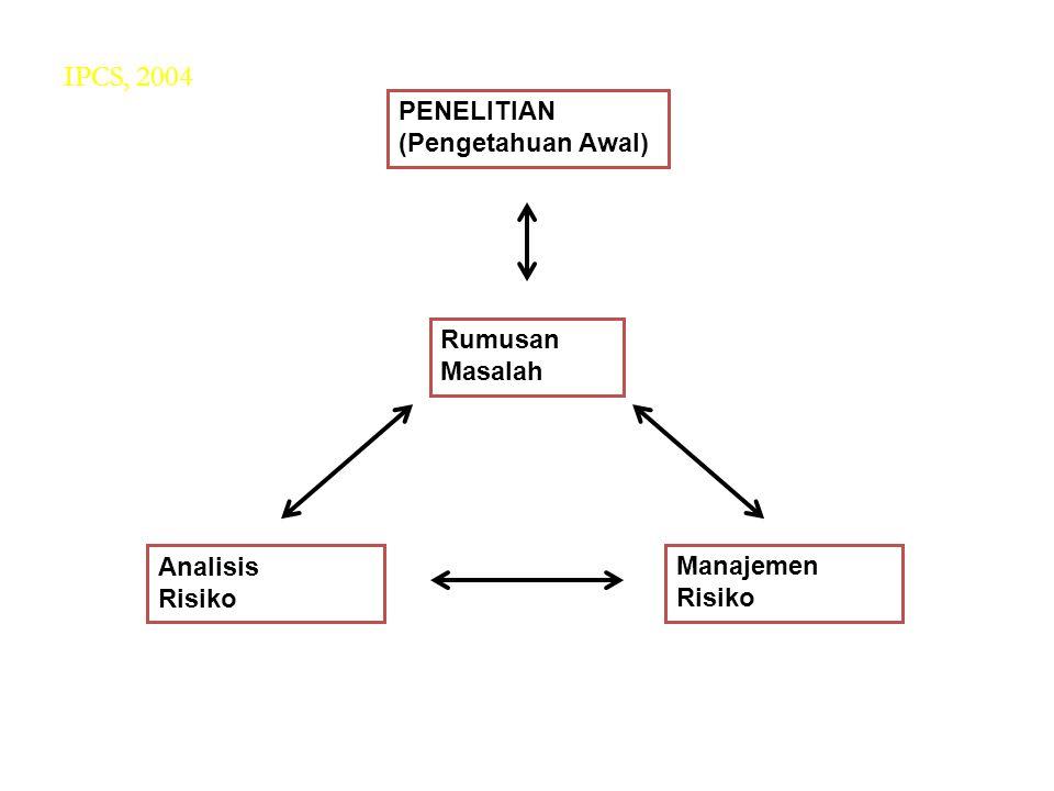 PENELITIAN (Pengetahuan Awal) Rumusan Masalah Analisis Risiko Manajemen Risiko IPCS, 2004