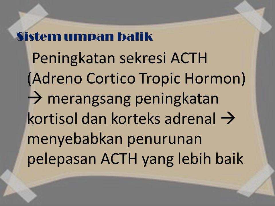 Sistem umpan balik Peningkatan sekresi ACTH (Adreno Cortico Tropic Hormon)  merangsang peningkatan kortisol dan korteks adrenal  menyebabkan penurunan pelepasan ACTH yang lebih baik