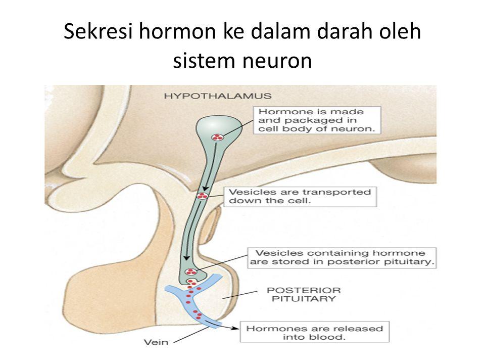 Sekresi hormon ke dalam darah oleh sistem neuron