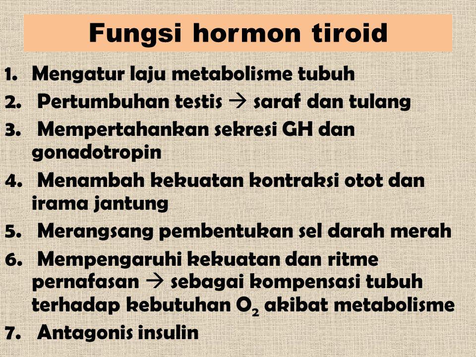 Fungsi hormon tiroid 1.Mengatur laju metabolisme tubuh 2. Pertumbuhan testis  saraf dan tulang 3. Mempertahankan sekresi GH dan gonadotropin 4. Menam