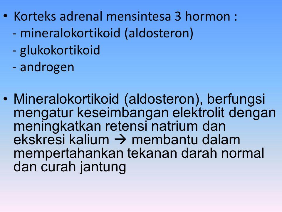 Korteks adrenal mensintesa 3 hormon : - mineralokortikoid (aldosteron) - glukokortikoid - androgen Mineralokortikoid (aldosteron), berfungsi mengatur keseimbangan elektrolit dengan meningkatkan retensi natrium dan ekskresi kalium  membantu dalam mempertahankan tekanan darah normal dan curah jantung