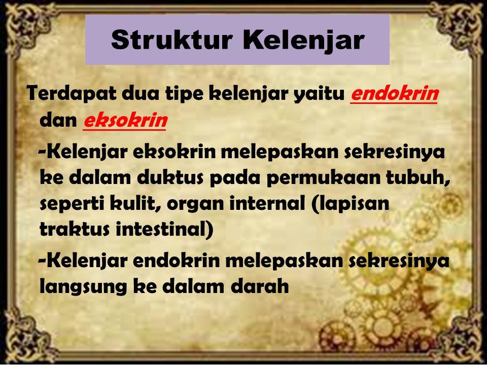 Struktur Kelenjar Terdapat dua tipe kelenjar yaitu endokrin dan eksokrin -Kelenjar eksokrin melepaskan sekresinya ke dalam duktus pada permukaan tubuh, seperti kulit, organ internal (lapisan traktus intestinal) -Kelenjar endokrin melepaskan sekresinya langsung ke dalam darah