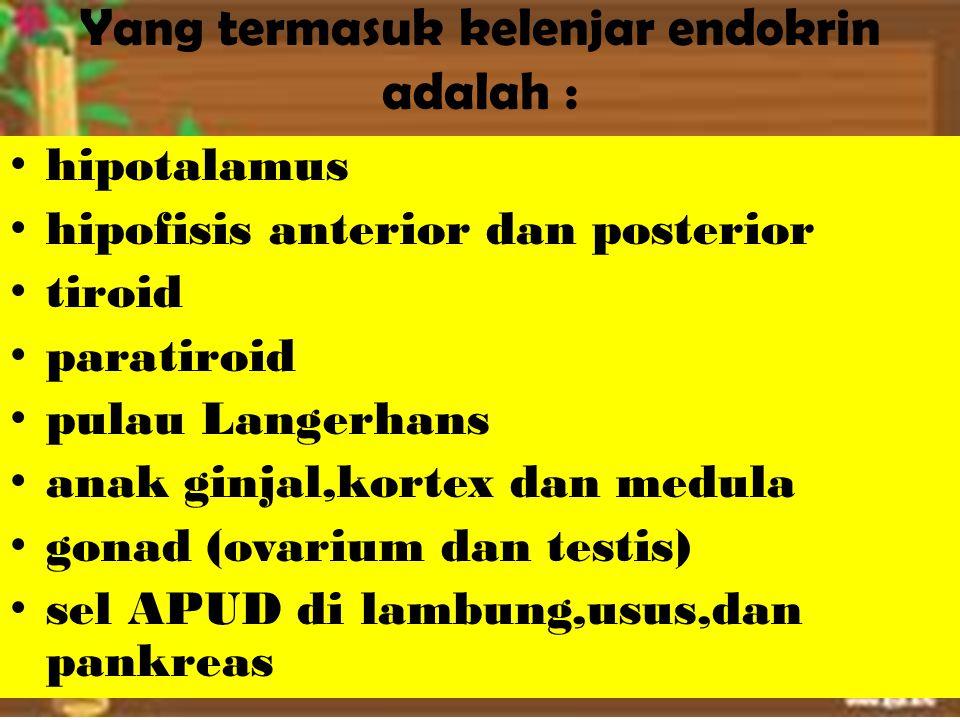 Yang termasuk kelenjar endokrin adalah : hipotalamus hipofisis anterior dan posterior tiroid paratiroid pulau Langerhans anak ginjal,kortex dan medula gonad (ovarium dan testis) sel APUD di lambung,usus,dan pankreas