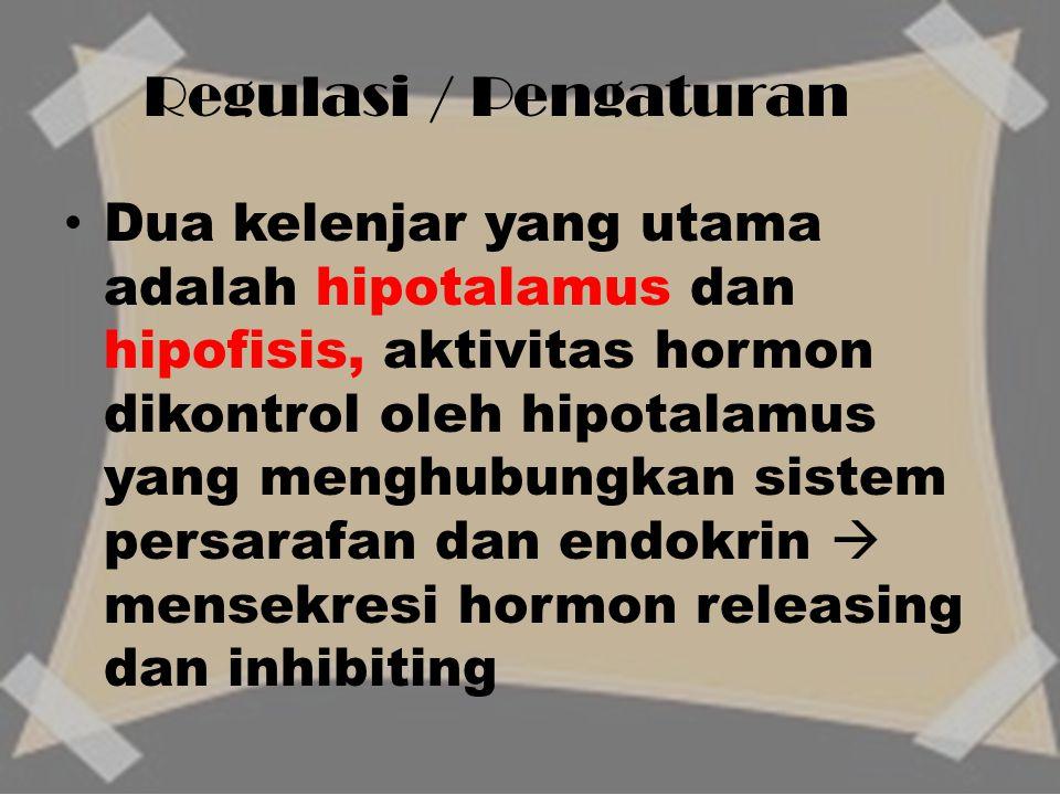Dua kelenjar yang utama adalah hipotalamus dan hipofisis, aktivitas hormon dikontrol oleh hipotalamus yang menghubungkan sistem persarafan dan endokri