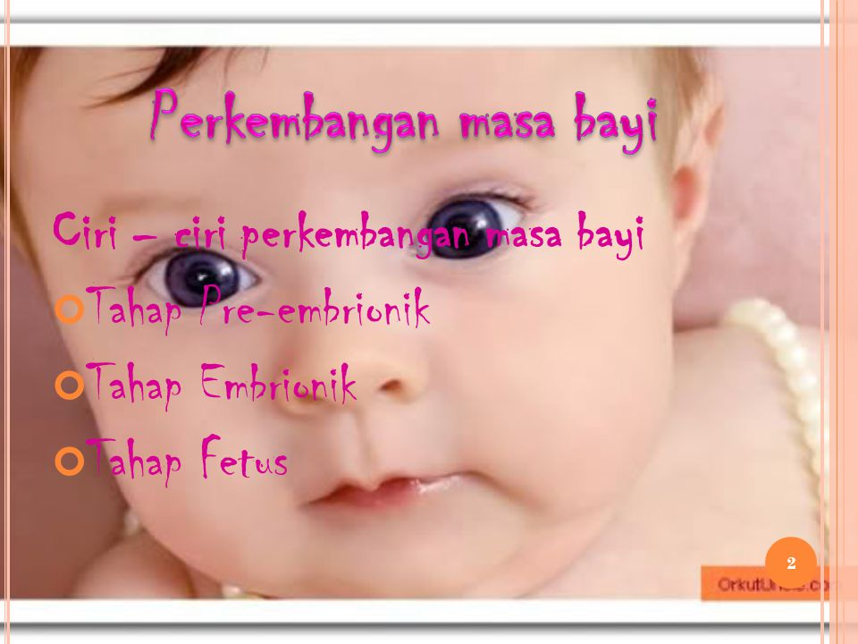 Ciri – ciri perkembangan masa bayi Tahap Pre-embrionik Tahap Embrionik Tahap Fetus 2