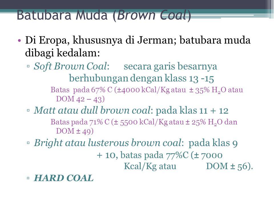 Batubara Muda (Brown Coal) Di Eropa, khususnya di Jerman; batubara muda dibagi kedalam: ▫Soft Brown Coal:secara garis besarnya berhubungan dengan klas