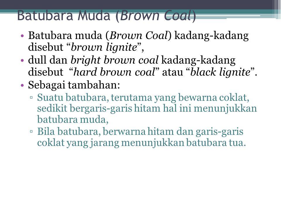 """Batubara Muda (Brown Coal) Batubara muda (Brown Coal) kadang-kadang disebut """"brown lignite"""", dull dan bright brown coal kadang-kadang disebut """"hard br"""