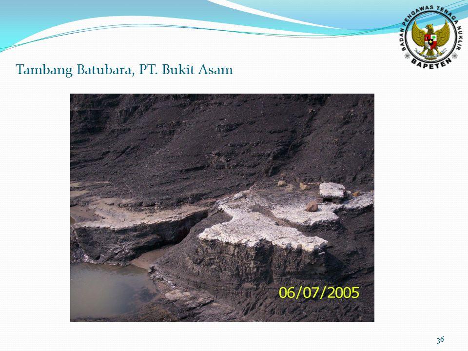 36 Tambang Batubara, PT. Bukit Asam