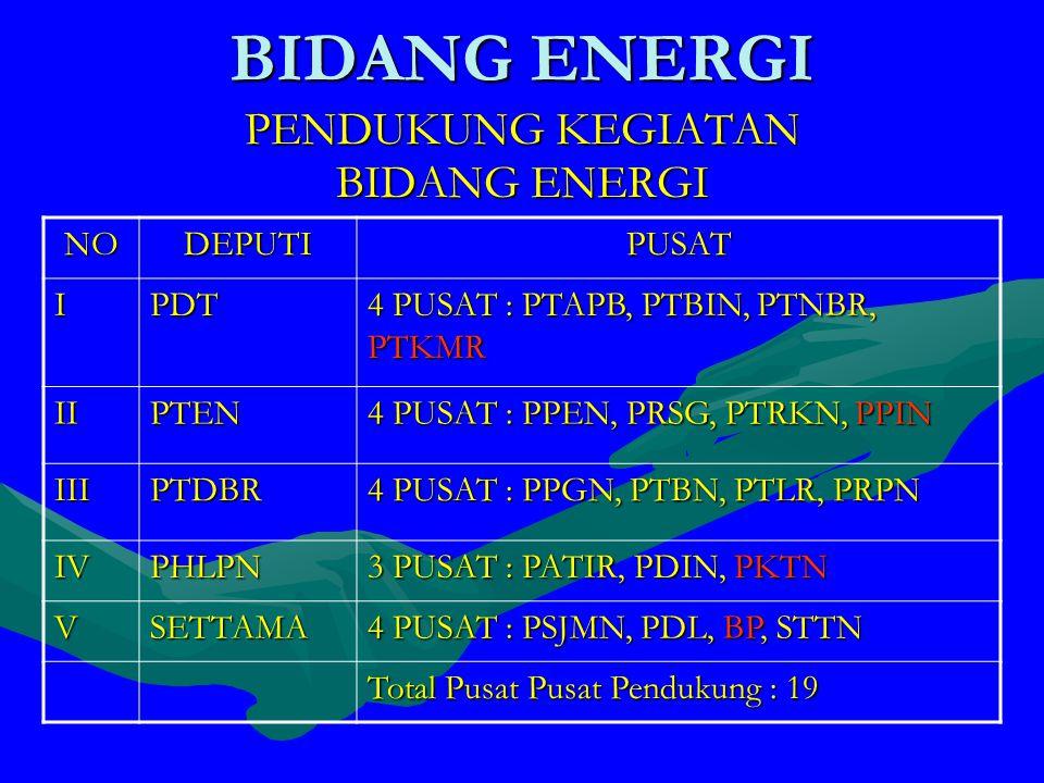 PENDUKUNG KEGIATAN BIDANG ENERGI NODEPUTIPUSAT IPDT 4 PUSAT : PTAPB, PTBIN, PTNBR, PTKMR IIPTEN 4 PUSAT : PPEN, PRSG, PTRKN, PPIN IIIPTDBR 4 PUSAT : PPGN, PTBN, PTLR, PRPN IVPHLPN 3 PUSAT : PATIR, PDIN, PKTN VSETTAMA 4 PUSAT : PSJMN, PDL, BP, STTN Total Pusat Pusat Pendukung : 19