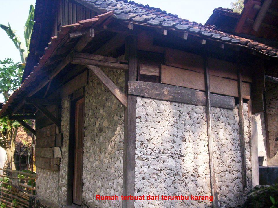 http://herwanparwiyanto.staff.uns.ac.id Rumah terbuat dari terumbu karang